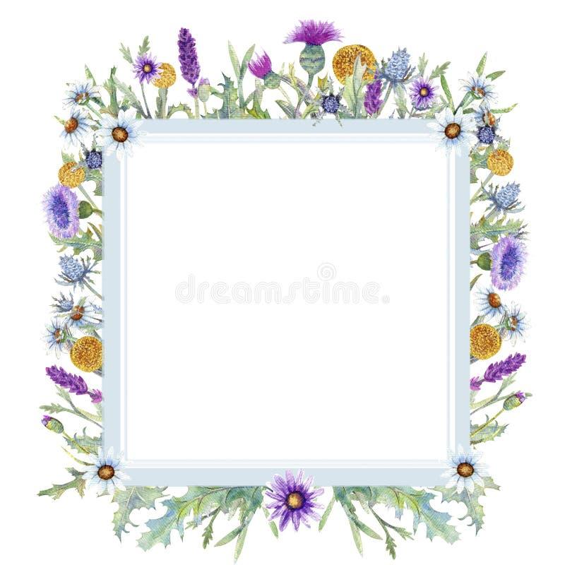 Grinalda romântica Pense feliz Moldes do cartão Wildflowers na aquarela ilustração royalty free