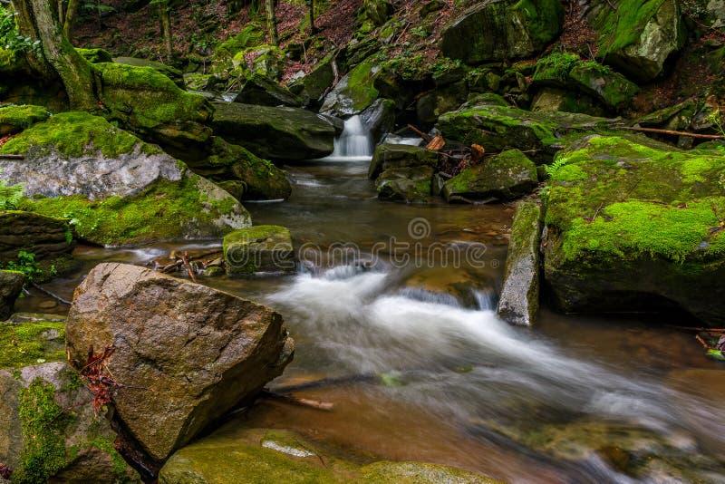 Grincement puissant avec la cascade dans la forêt verte photographie stock