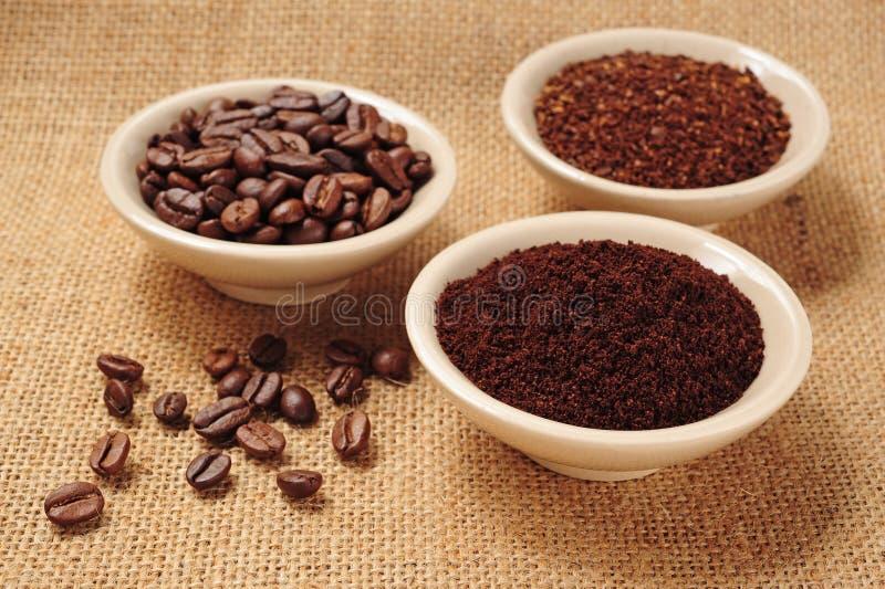 grinded kaffe royaltyfri foto
