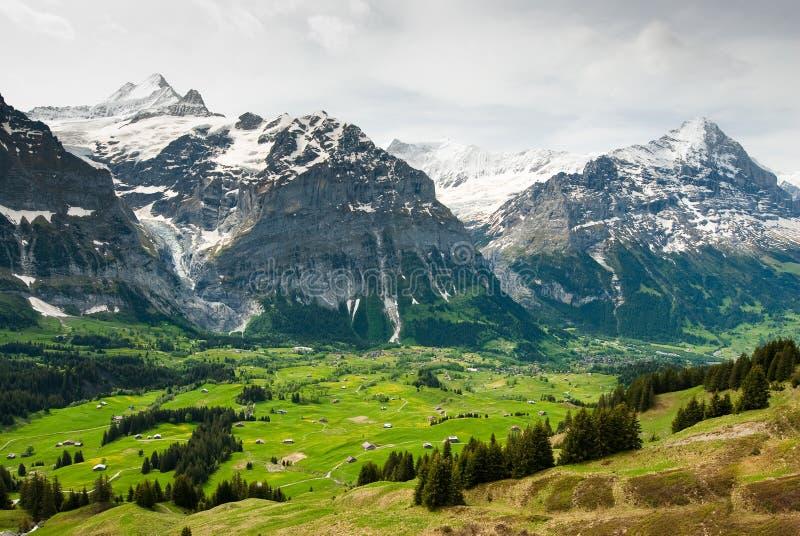 Grindelwal Tal im Frühjahr lizenzfreie stockfotos