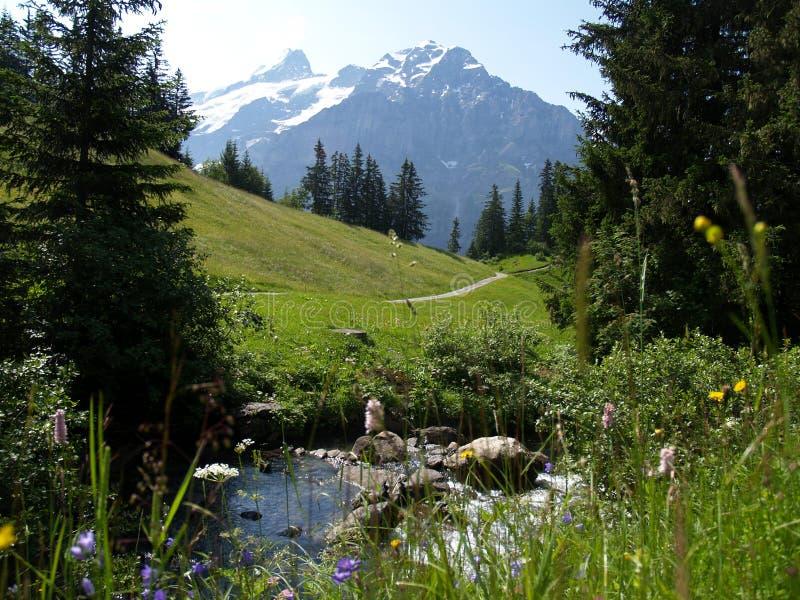 Grindelwald foto de archivo libre de regalías