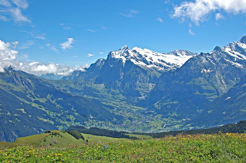 Grindelwald imagem de stock royalty free