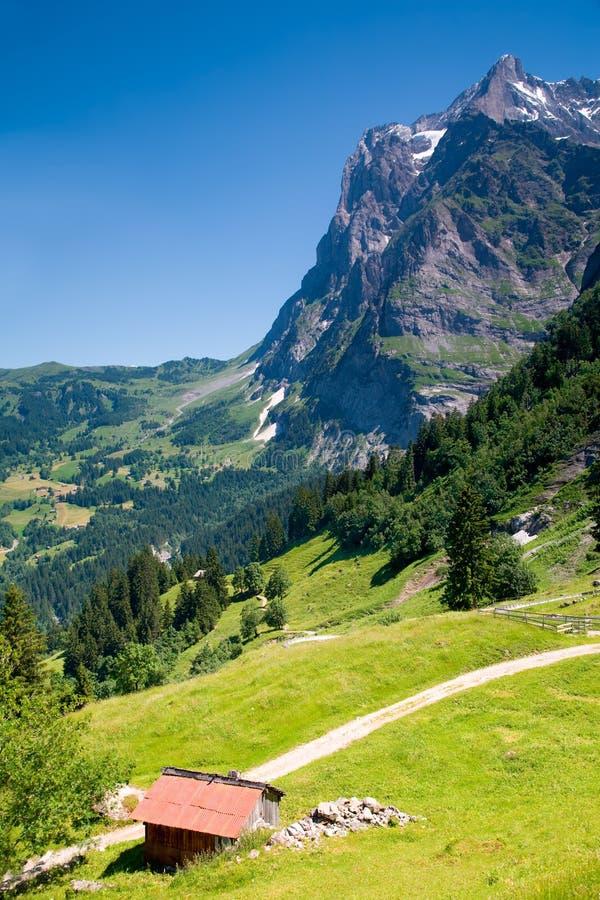 Grindelwald en el cantón Suiza de Berna fotografía de archivo