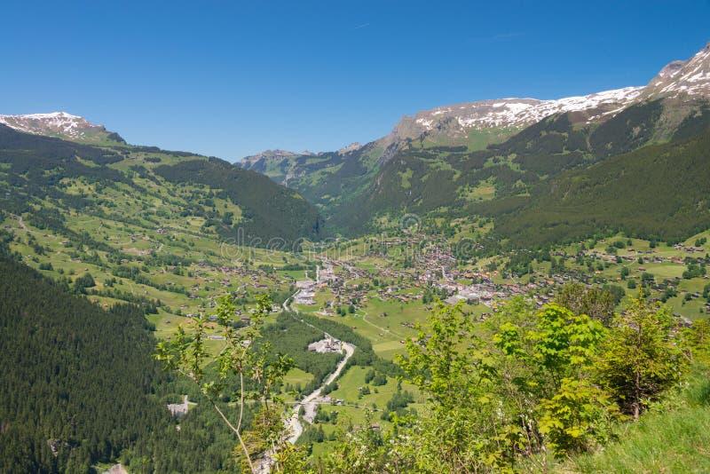 Grindelwald från Mattenberg i Schweiz royaltyfri bild