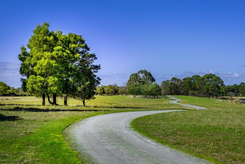 Grintweg die door Australisch platteland overgaan royalty-vrije stock foto's