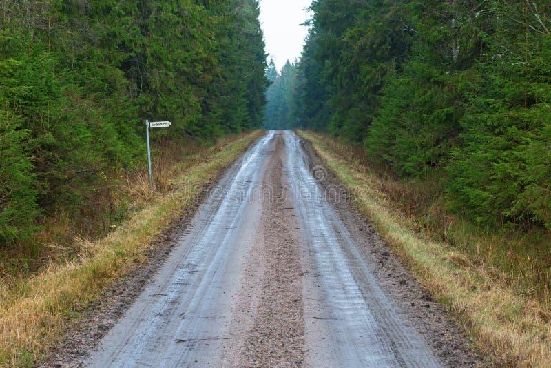 Grintweg in het bos royalty-vrije stock foto