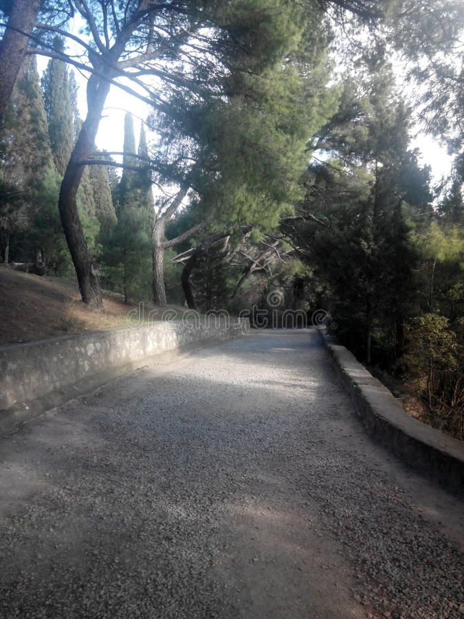 grintweg in het park stock afbeelding