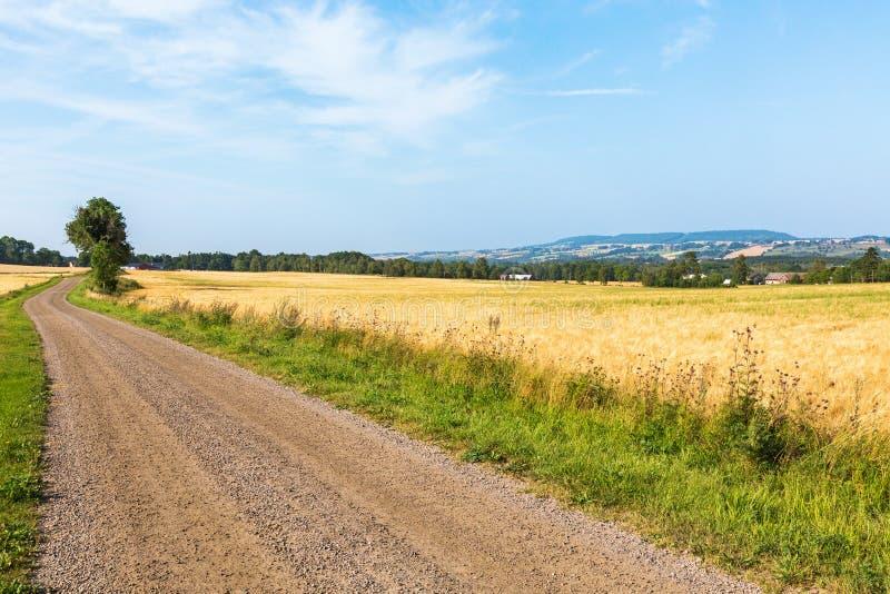 Grintweg in platteland stock fotografie