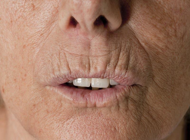 Grinze - signora maggiore Face - pelle fotografie stock