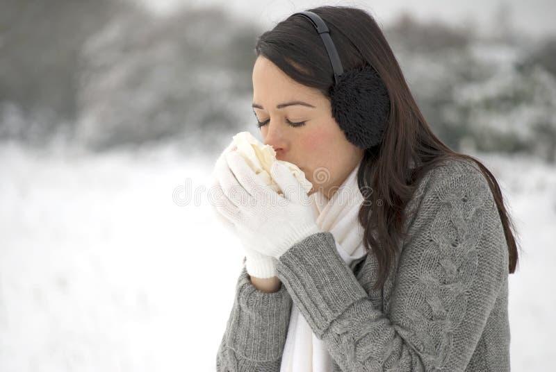 Gripe do inverno fotografia de stock royalty free