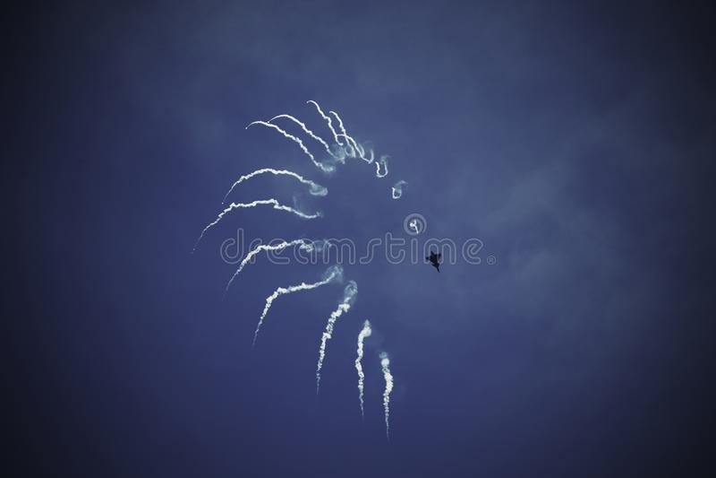 Gripen Demo Flight images libres de droits