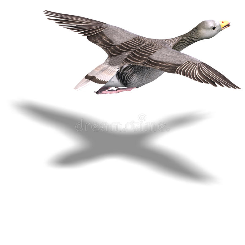gris d'oie de vol illustration libre de droits