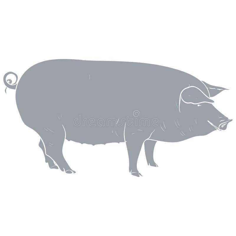 Gris del cerdo de la plantilla imagen de archivo libre de regalías