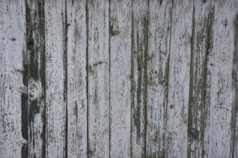 Gris et peinture verte sur une barrière en bois image libre de droits