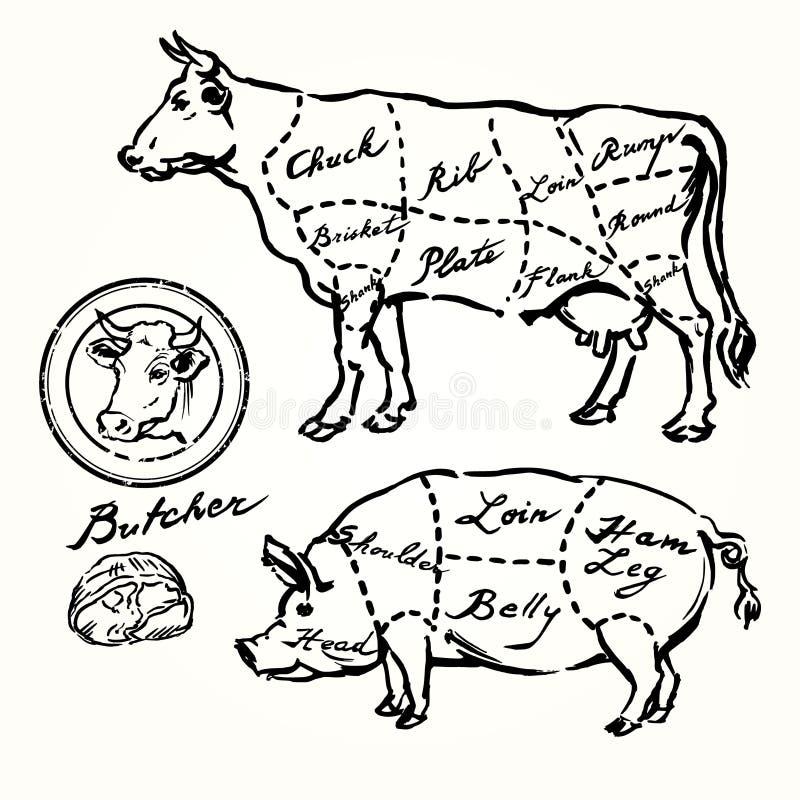 Griskött- och nötköttsnitt stock illustrationer
