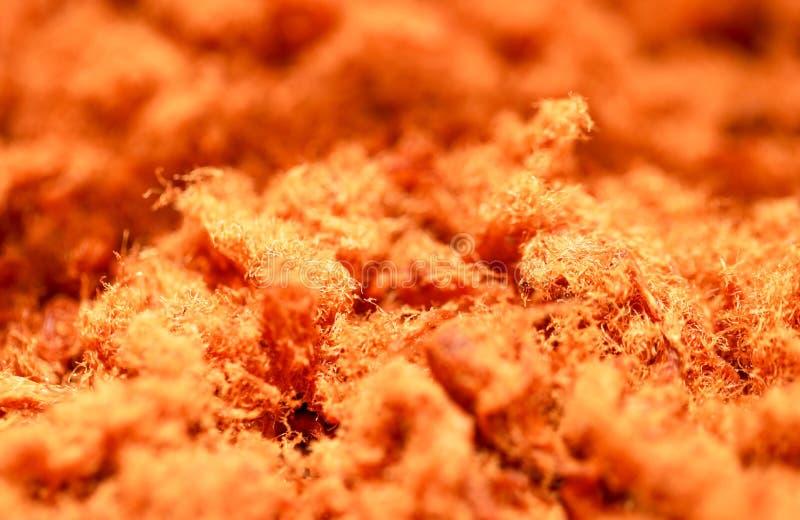 GrisköttFloss, torkat strimlat griskött, köttull, köttFloss, Rousong, sjungit griskött eller Yuk sjöng Asiatisk mat, arkivbild