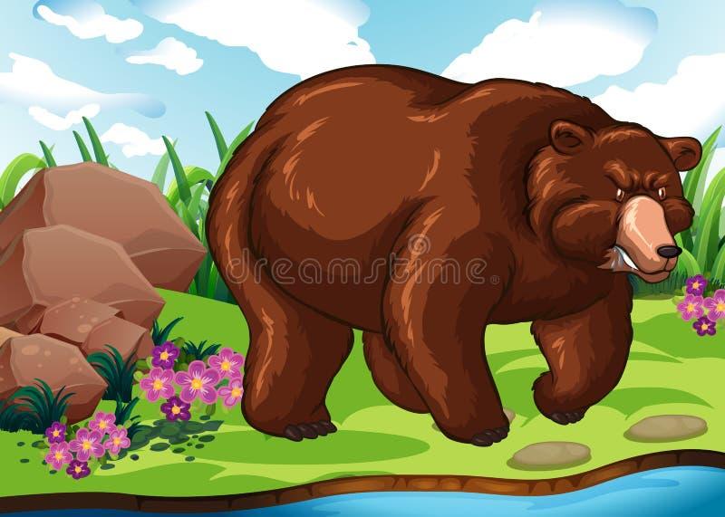 Grisslybjörn som står vid floden royaltyfri illustrationer