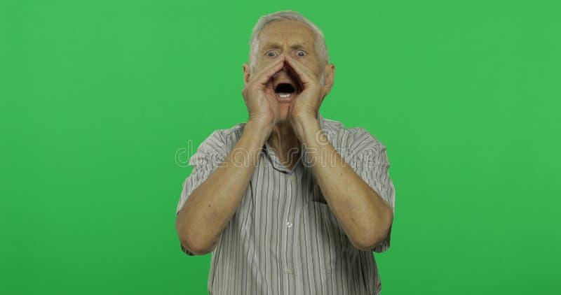Grito del hombre mayor Viejo hombre hermoso en el fondo dominante de la croma imágenes de archivo libres de regalías