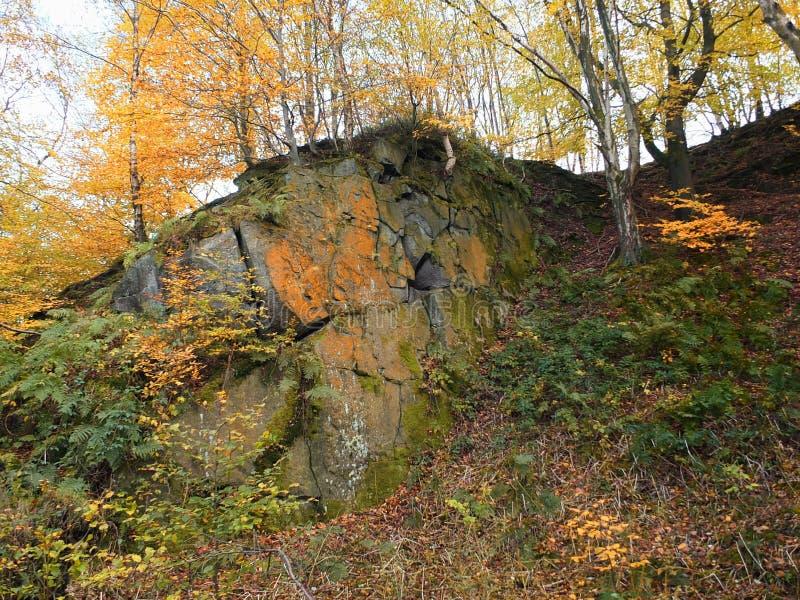 Gritstone露出在叶绿泥石谷秋天森林里 免版税库存图片