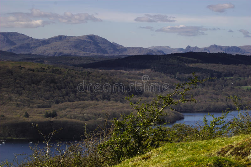 Grizedale Forest - English Lake District. Grizedale Forest with Coniston Old Man, Langdales, Great Gable behind and Windermere in front stock images
