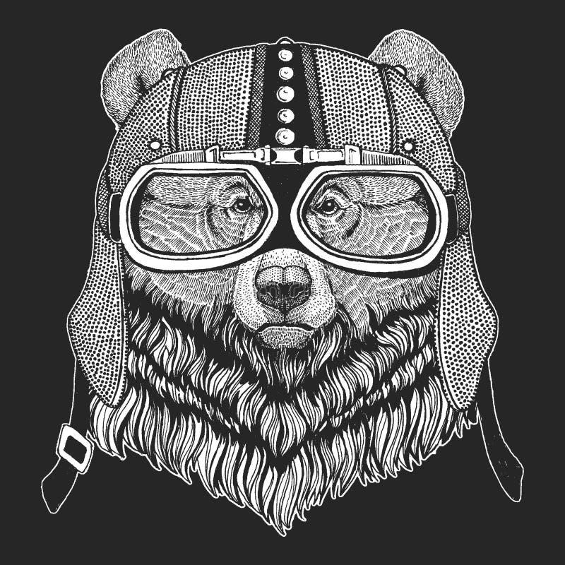 Grizzley-Bär, der für Lebensmittel herumsucht Weinlesemotorrad hemlet Retrostilillustration mit Tierradfahrer für Kinder, Kinder- vektor abbildung