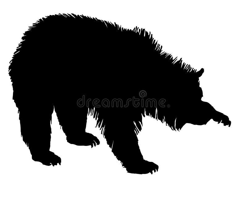 grizzly ilustracji