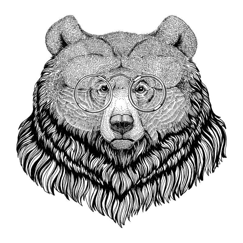 Grizzly niedźwiedzia modnisia stylu zwierzęcy wizerunek dla tatuażu, logo, emblemat, odznaka projekt ilustracja wektor