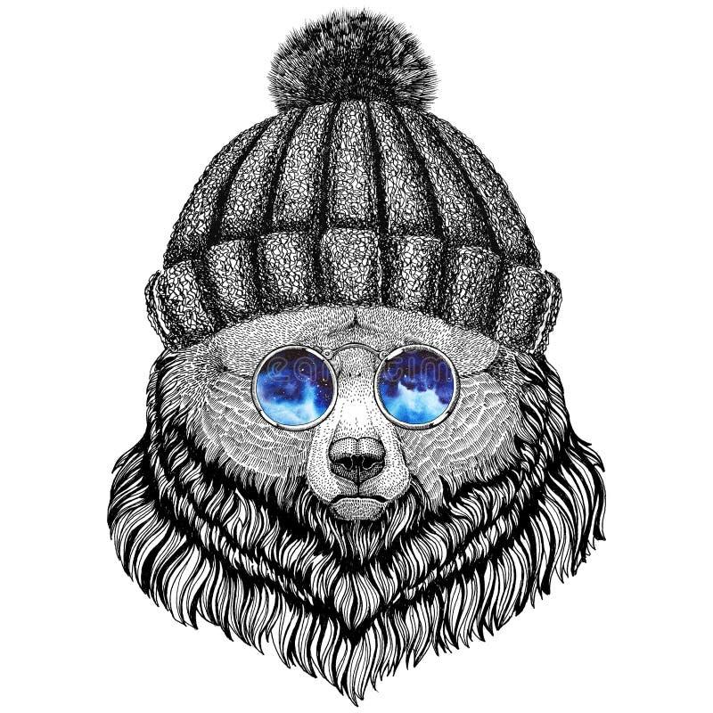 Grizzly niedźwiedzia modnisia stylu zwierzęcy wizerunek dla tatuażu, logo, emblemat, odznaka projekt ilustracji