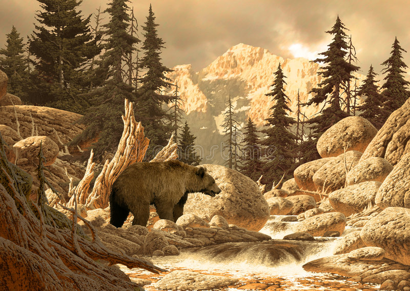Grizzly in Tetons stock afbeeldingen