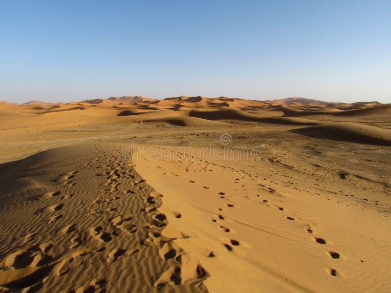 Großartige Ansichten von hohen und erstaunlichen Sanddünen in Sahara Desert stockfotografie