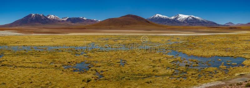 Großartige Landschaft mit See und Schnee bedeckten Vulkanen lizenzfreie stockbilder