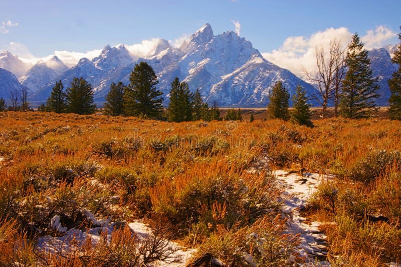 Großartige Teton Berge lizenzfreie stockfotos