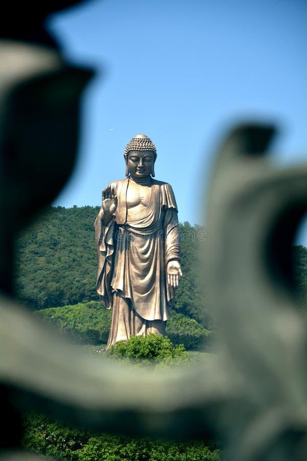 Großartiger Buddha bei Lingshan stockfotos