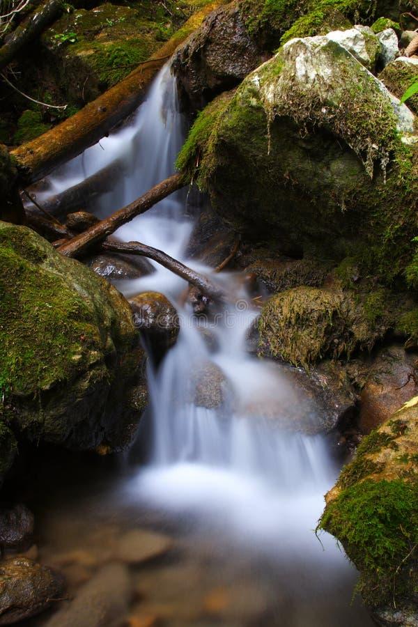 Großartiger Wasserfall im Wald lizenzfreie stockfotografie