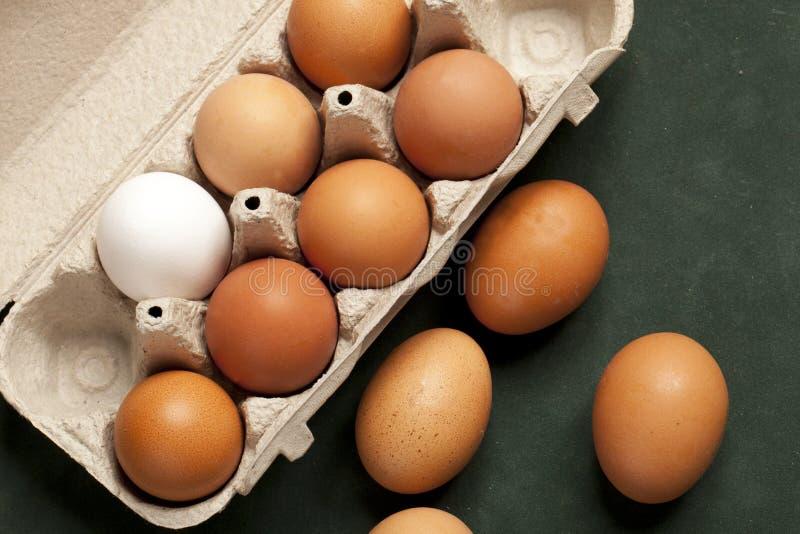 Großaufnahme von rohen Hühnereien im grauen Kasten, Eiweiß, braunes Ei auf grünem Hintergrund lizenzfreie stockfotos