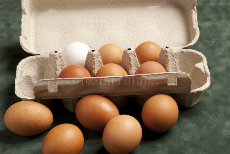 Großaufnahme von rohen Hühnereien im Kasten, Eiweiß, Eibraun auf grünem Hintergrund stockfotos