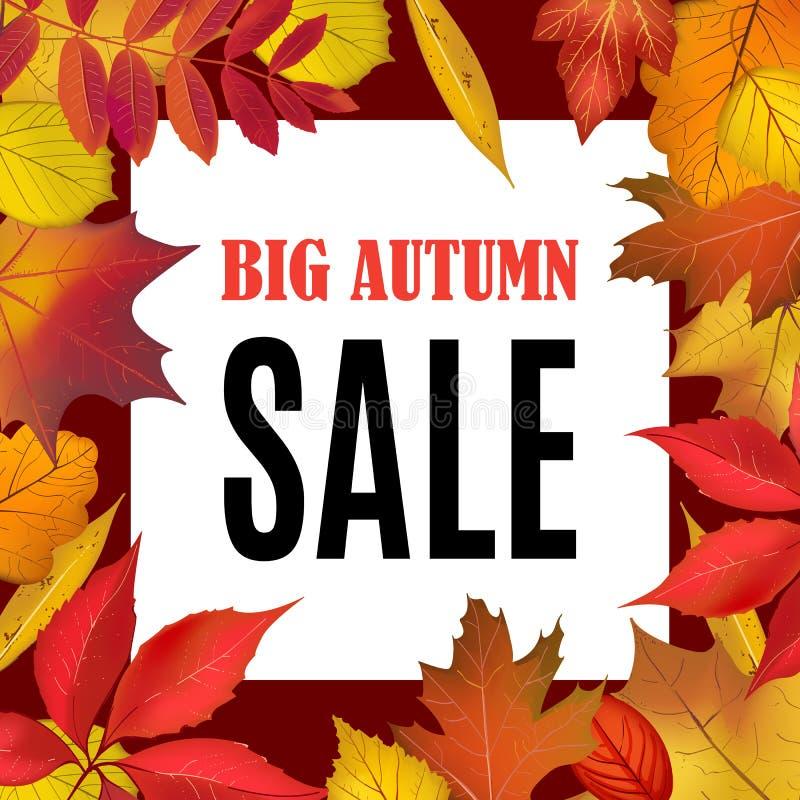 Große Autumn Sale-Fahnenschablone mit Fall verlässt Grenzrahmen stock abbildung