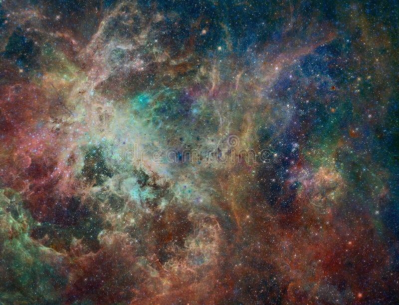 Große Babys in Rosette Nebula lizenzfreie abbildung
