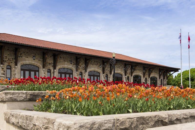 Große Blumenbeete von orange und roten Tulpen mit dem Berg-königlichen Chalet im Hintergrund stockfotos