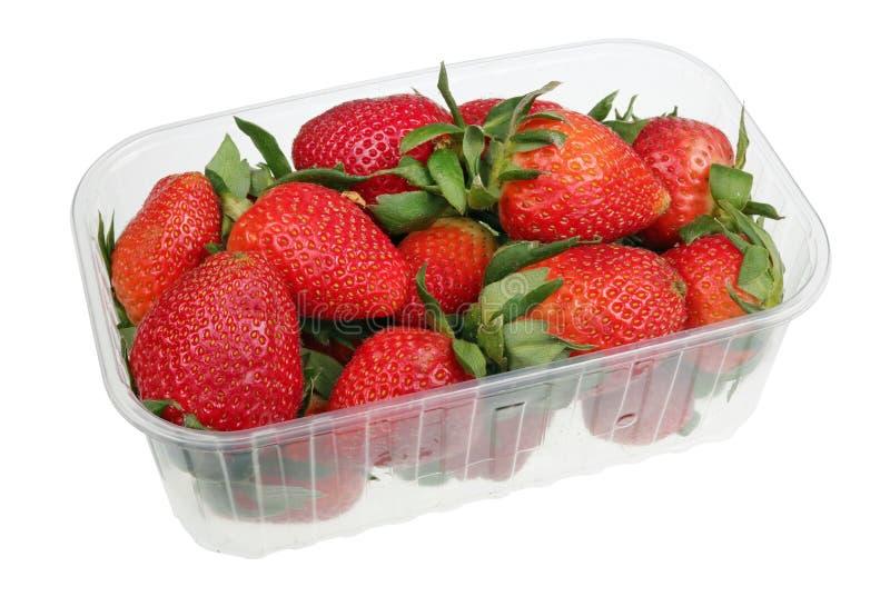 Große Erdbeerbeeren in einem industriellen lokalisierten Makro des Plastikkastens lizenzfreie stockfotos