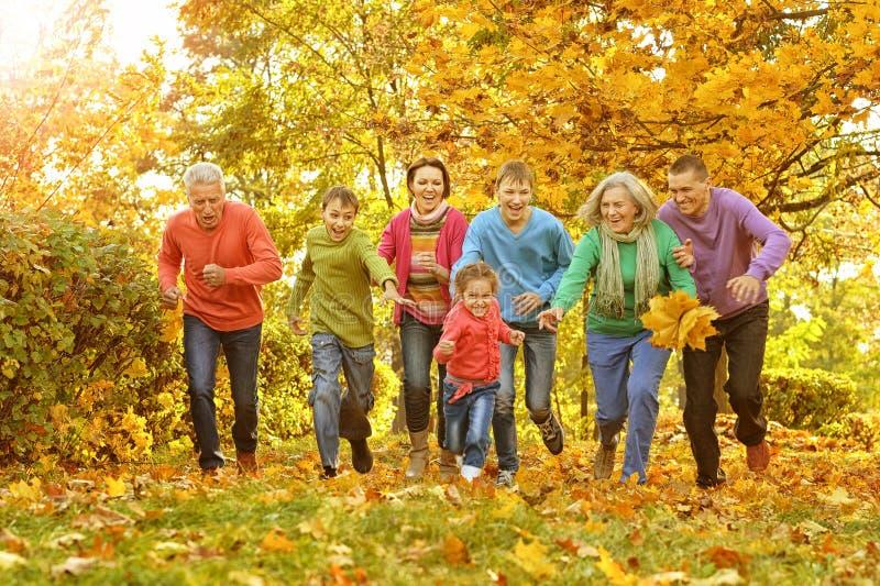 Große Familie, die Spaß hat lizenzfreies stockbild
