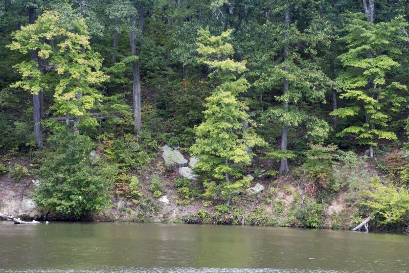 Große Felsen auf dem Ufer stockbilder