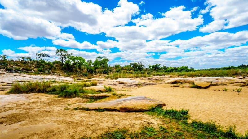 Große Felsen in fast trockenen Sabie River in zentralem Nationalpark Kruger stockfoto
