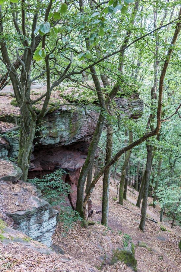 Große Felsen inmitten des grünen Waldes lizenzfreies stockbild
