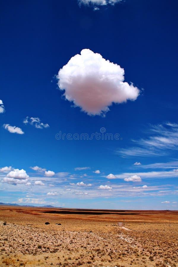 Große flaumige Kumuluswolke über leerer Wüstenlandschaft in Arizona stockfotos