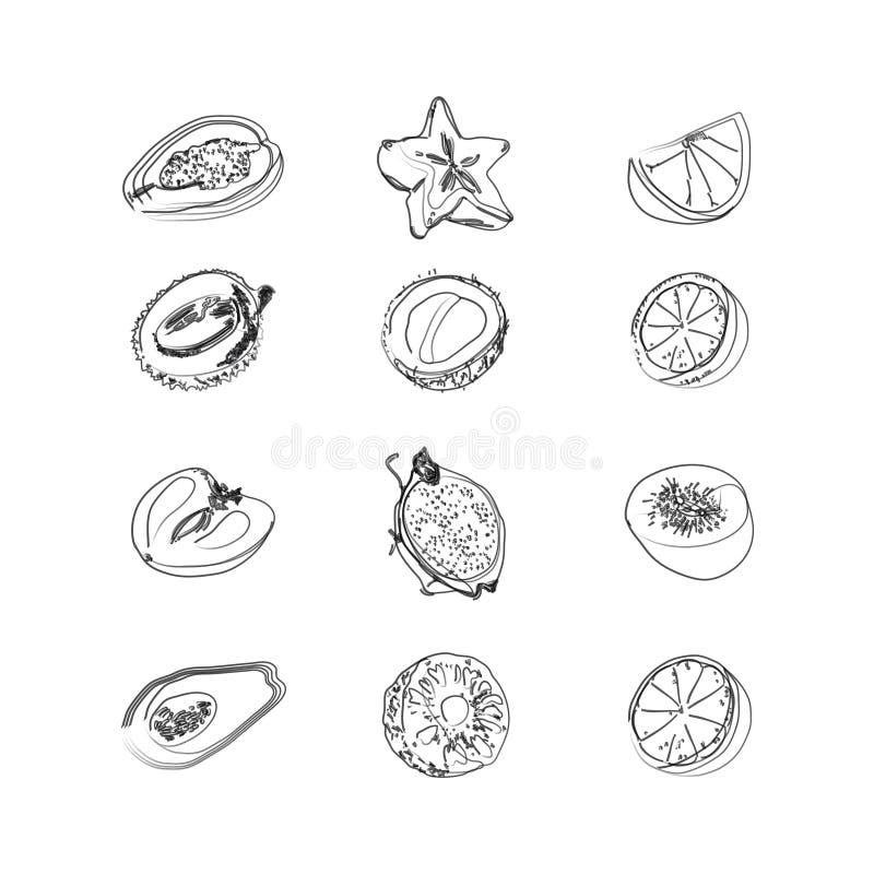 Große Fruchtsatz-Gekritzelikonen Entwurfsillustrationen lokalisiert auf weißem Hintergrund Vektorlebensmittelikonen stock abbildung