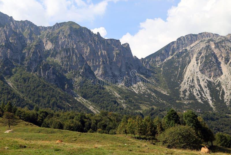 große Landschaft von italienischen Bergen zog Venetian Prealps hinzu stockfotografie