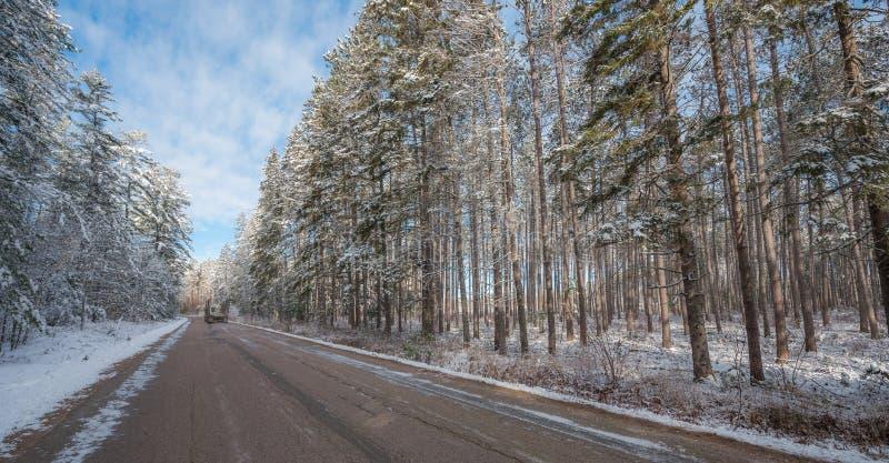 Große ol Messwagenfässer werfen die Straße nieder Schnee deckte Kiefern ab stockfotografie