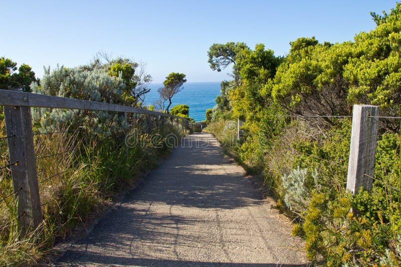 Große Ozean Straße Australiens, Weg zur Küste lizenzfreies stockbild
