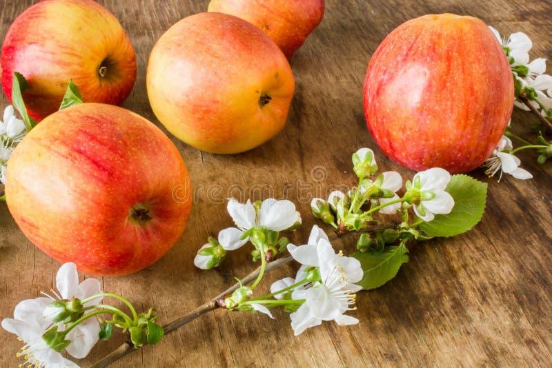 Große saftige rote Äpfel nahe den Blumen lizenzfreie stockbilder